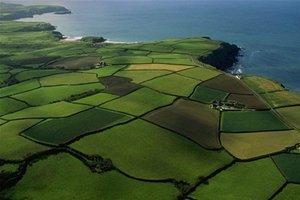 Оцінка земельних ділянок